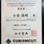 千葉【蘇我】でキュビズムカット体験講習会を開催します。